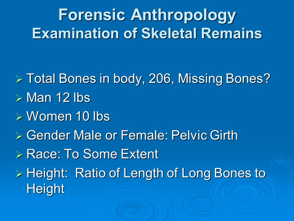 Forensic Anthropology Examination of Skeletal Remains