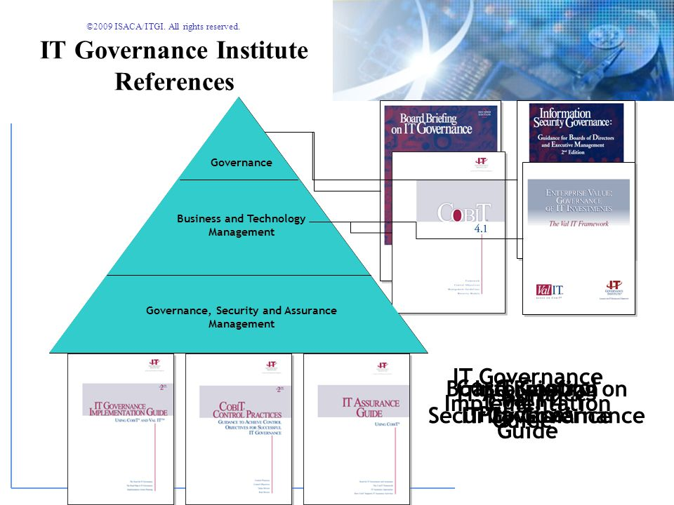 IT Governance Institute References