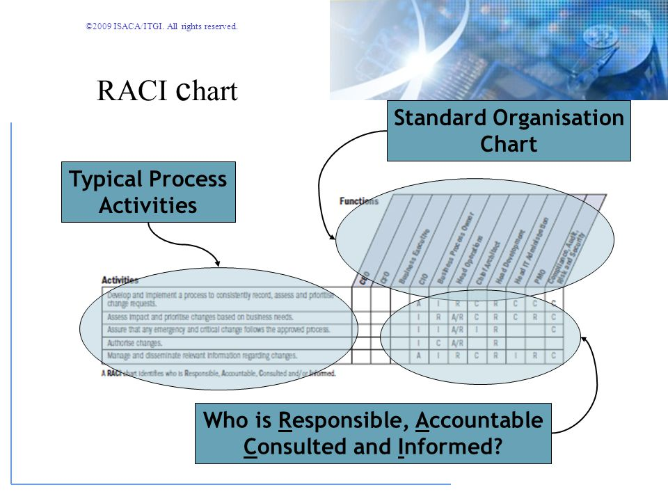RACI chart Standard Organisation Chart Typical Process Activities