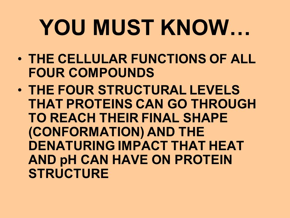 YOU MUST KNOW… THE CELLULAR FUNCTIONS OF ALL FOUR COMPOUNDS