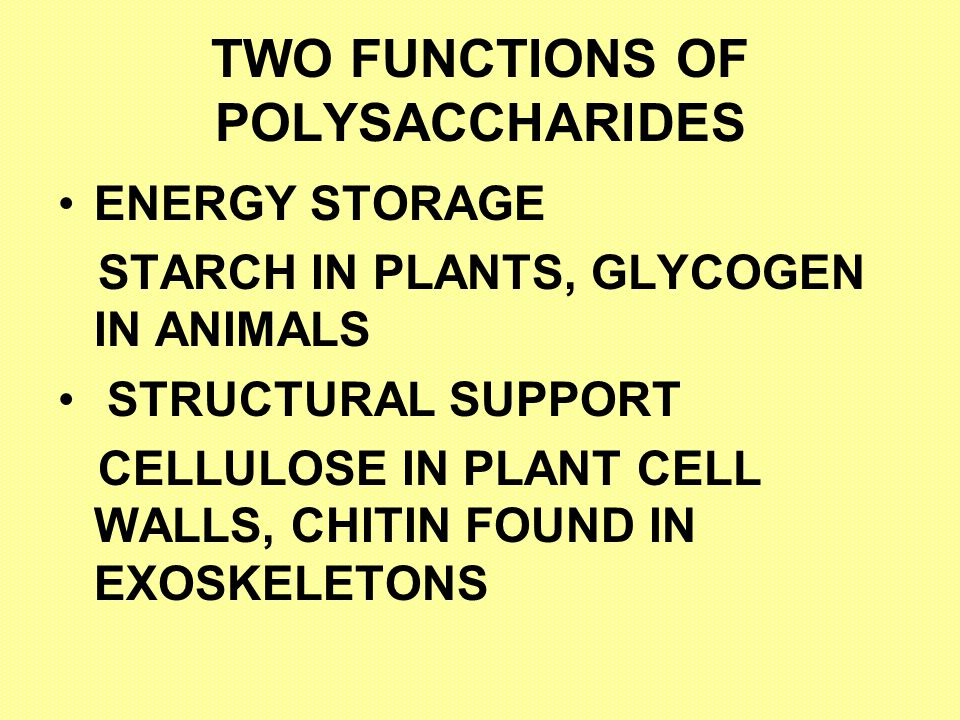 TWO FUNCTIONS OF POLYSACCHARIDES
