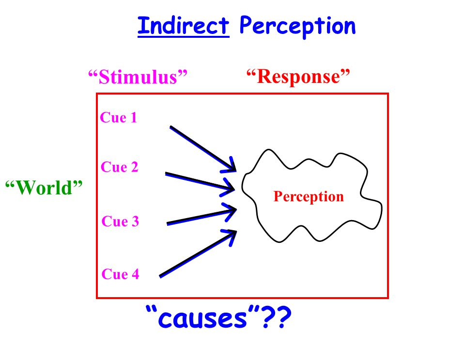 causes Indirect Perception Stimulus Response World Cue 1
