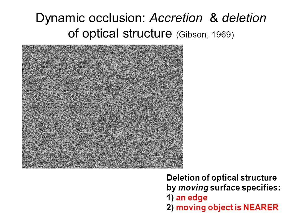 Dynamic occlusion: Accretion & deletion of optical structure (Gibson, 1969)