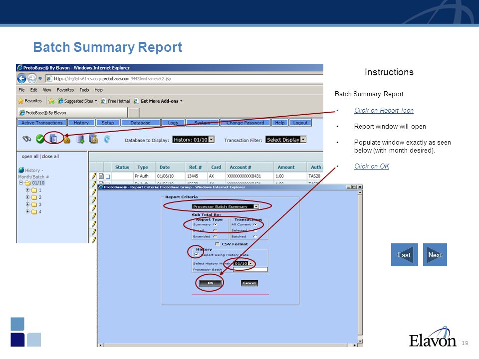 Batch Summary Report Instructions Batch Summary Report