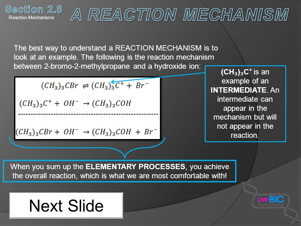A REACTION MECHANISM Next Slide Section 2.8