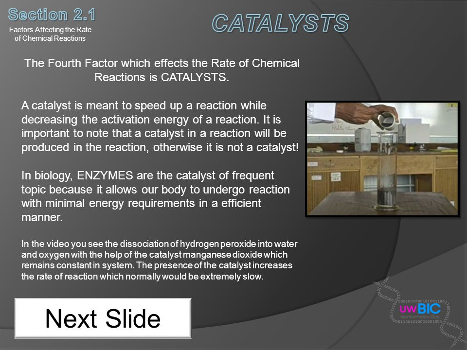 Factors Affecting the Rate of Chemical Reactions