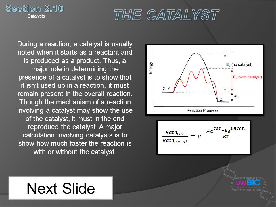 Next Slide THE CATALYST Section 2.10