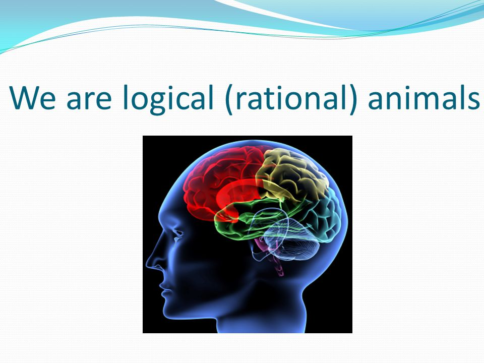 We are logical (rational) animals