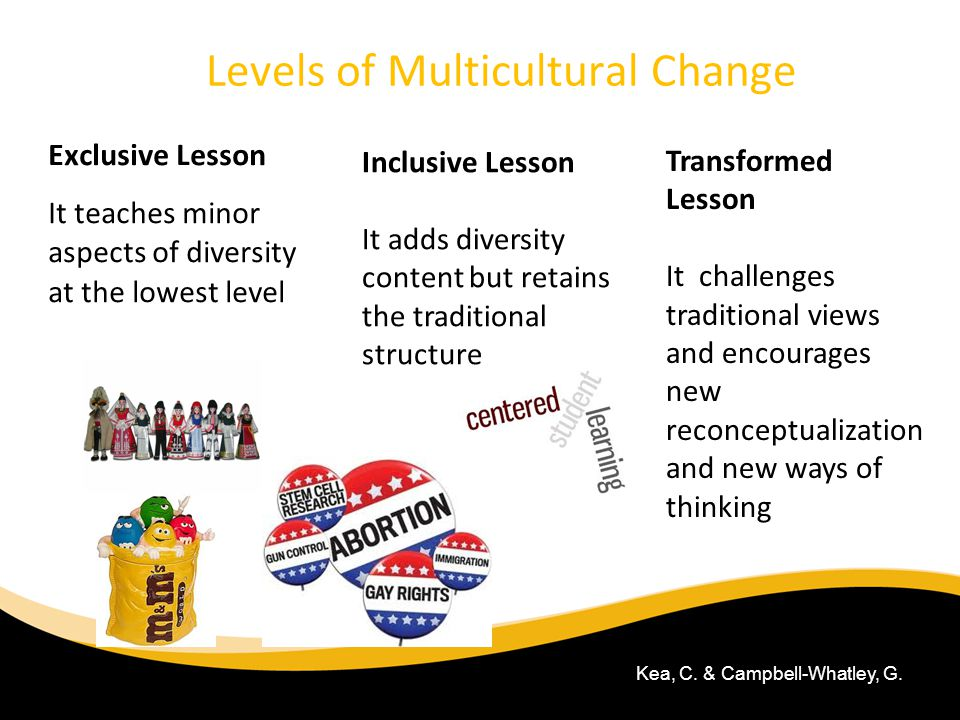 Levels of Multicultural Change