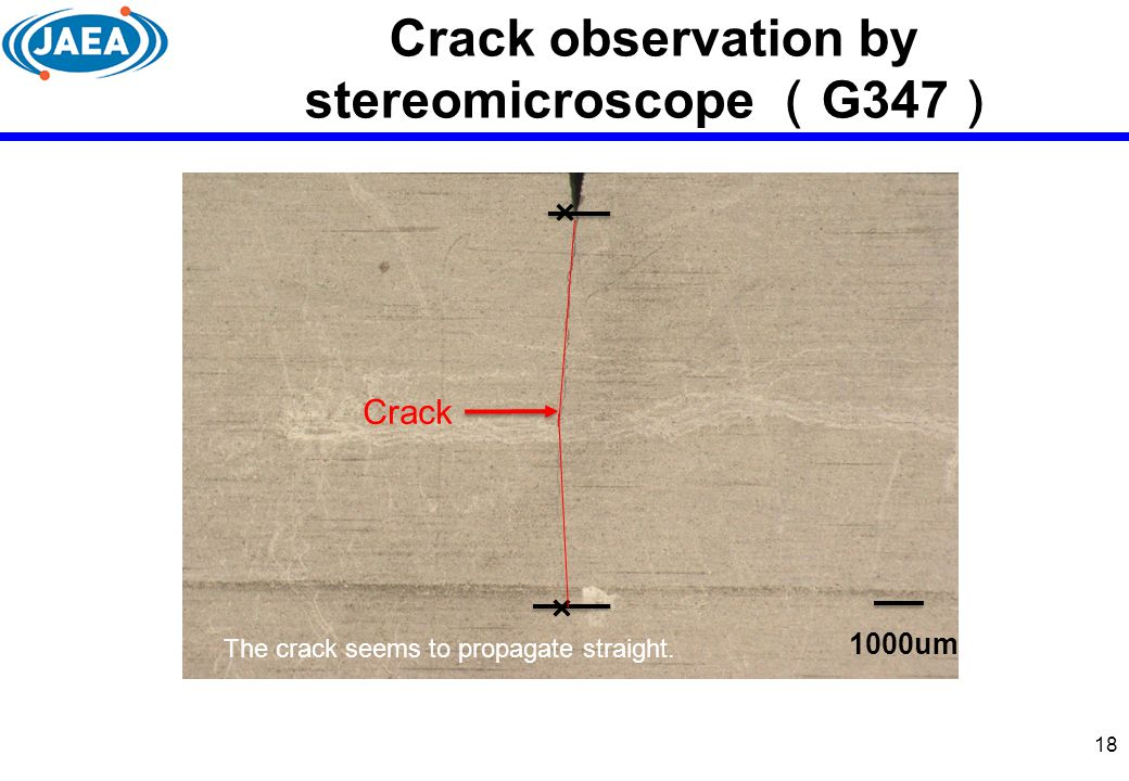 Crack observation by stereomicroscope (G347)