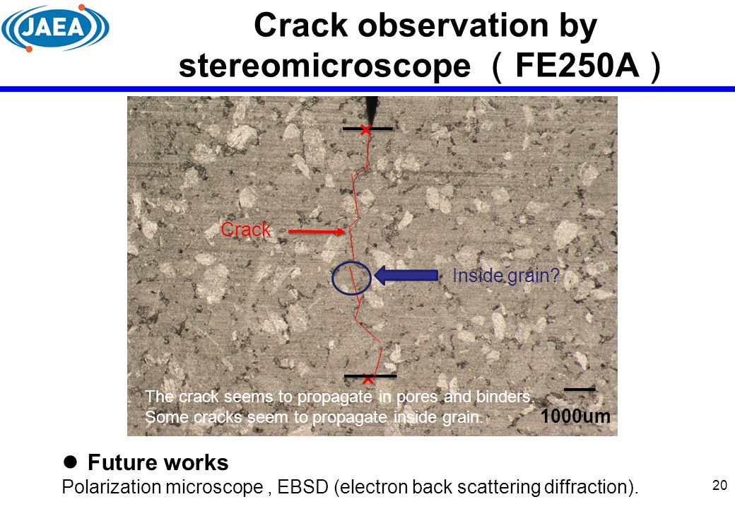 Crack observation by stereomicroscope (FE250A)