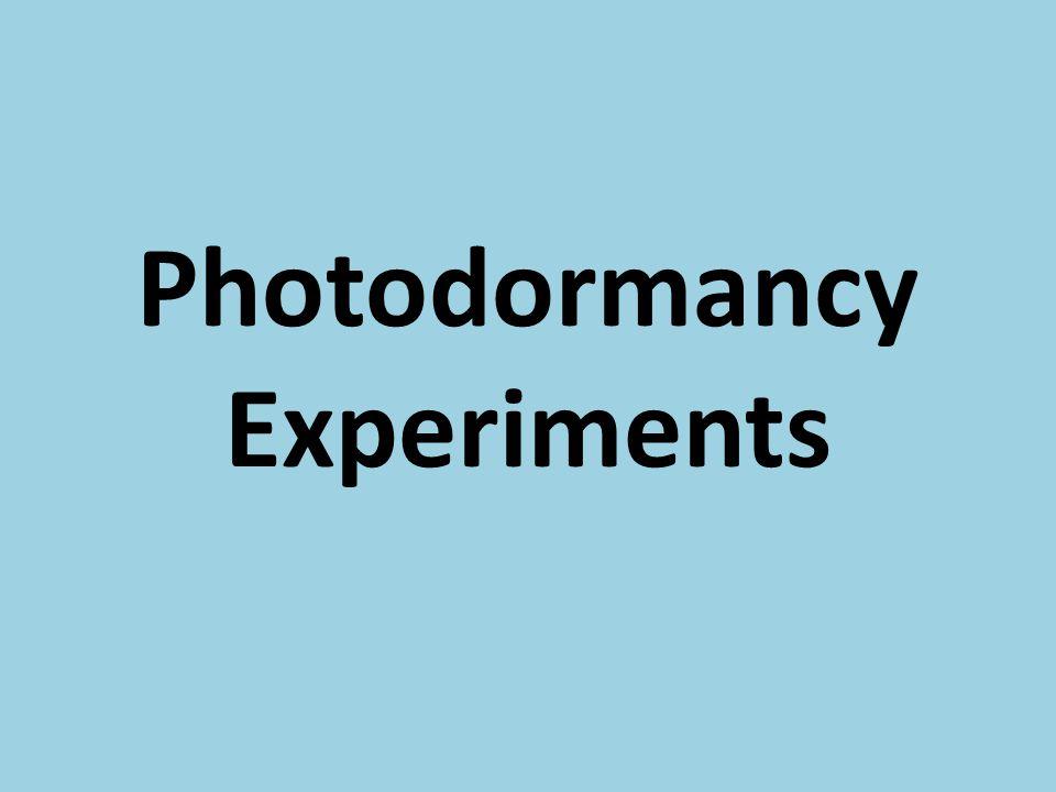 Photodormancy Experiments