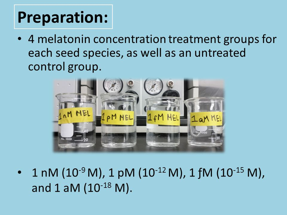 Preparation: 4 melatonin concentration treatment groups for each seed species, as well as an untreated control group.