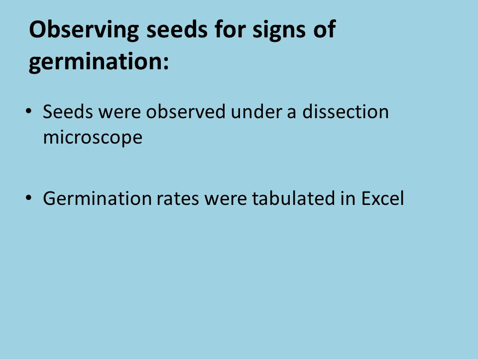 Observing seeds for signs of germination: