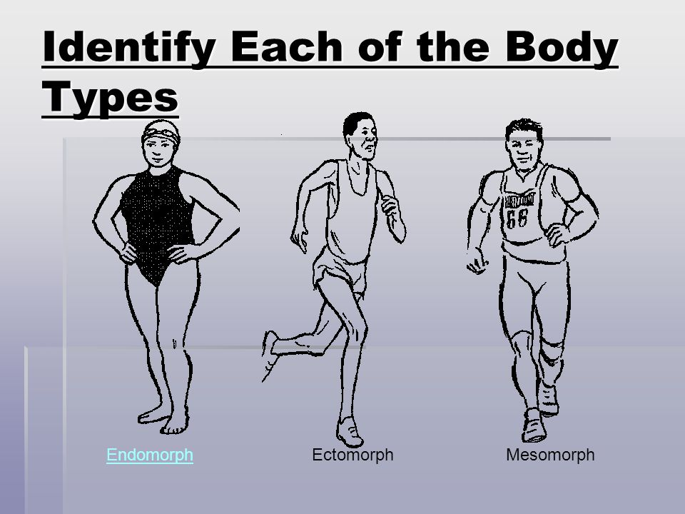 Identify Each of the Body Types