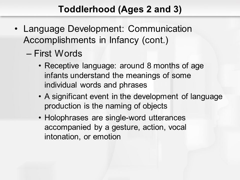 Toddlerhood (Ages 2 and 3)