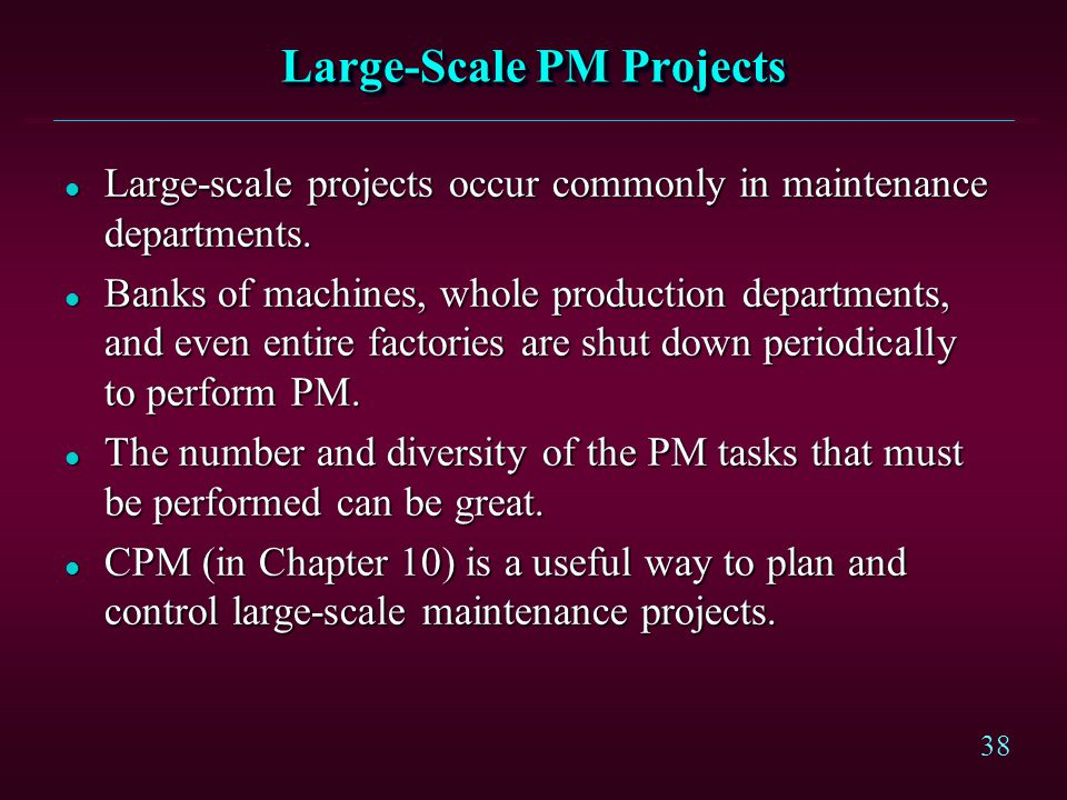 Large-Scale PM Projects