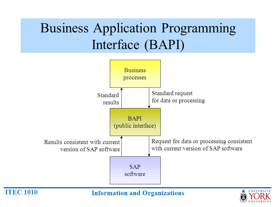Business Application Programming Interface (BAPI)