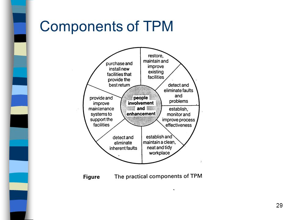 Components of TPM
