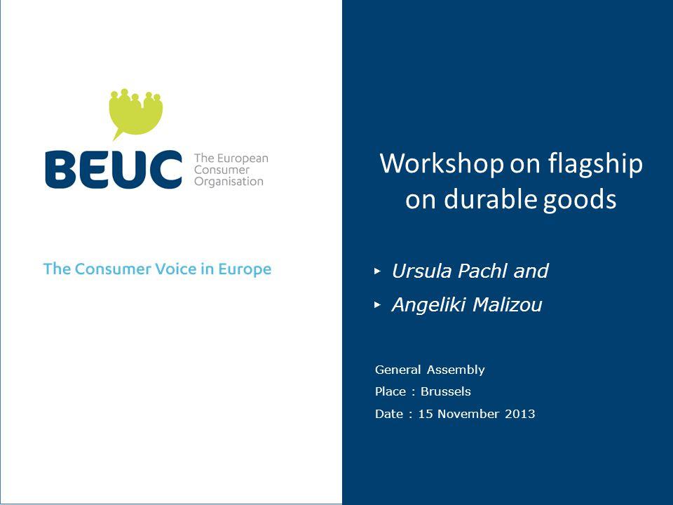 Workshop on flagship on durable goods