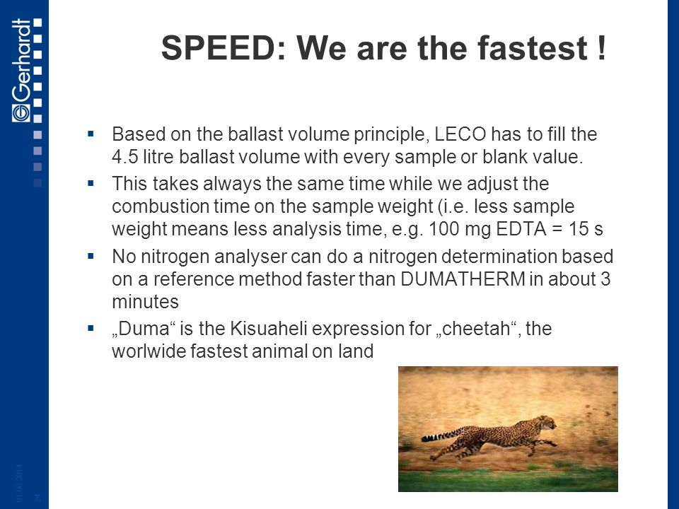 SPEED: We are the fastest !