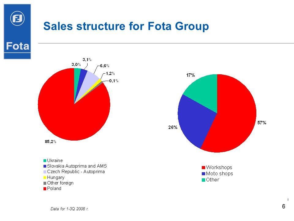 Sales structure for Fota Group