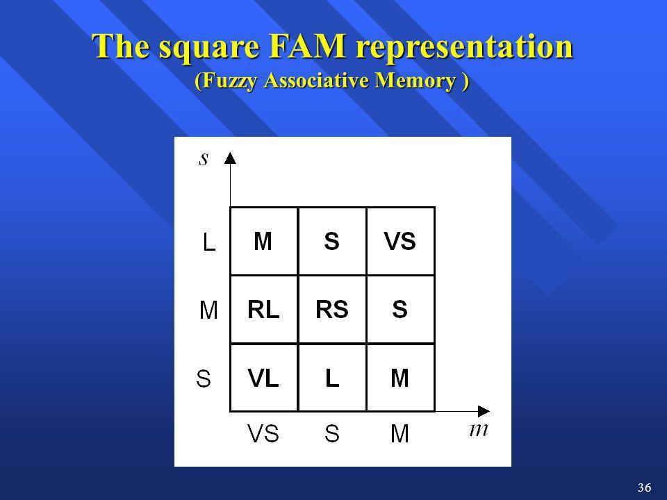The square FAM representation (Fuzzy Associative Memory )