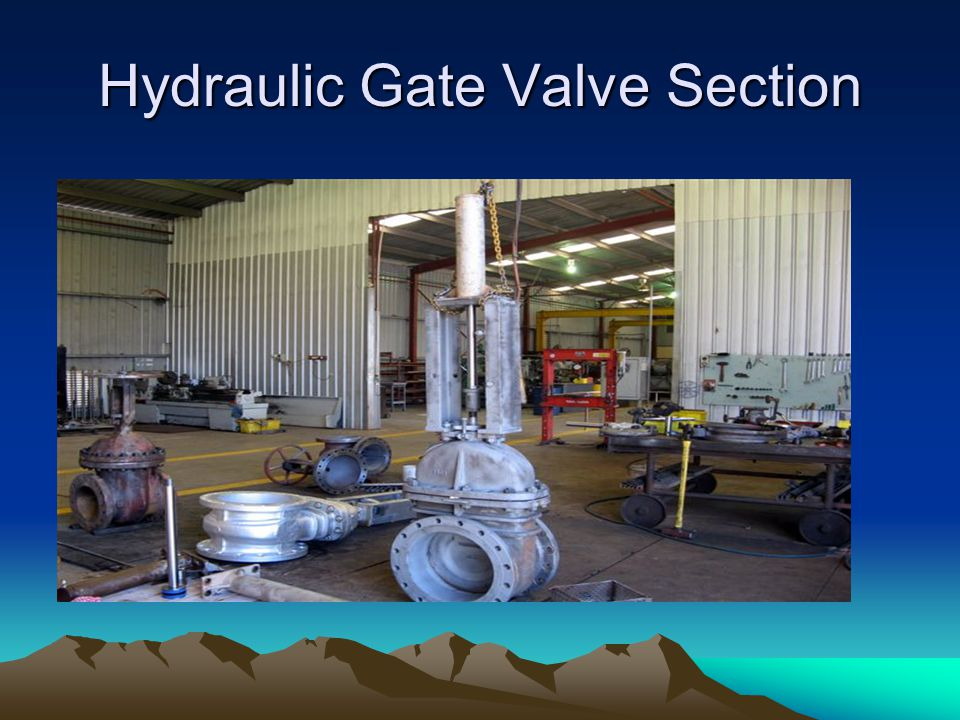 Hydraulic Gate Valve Section