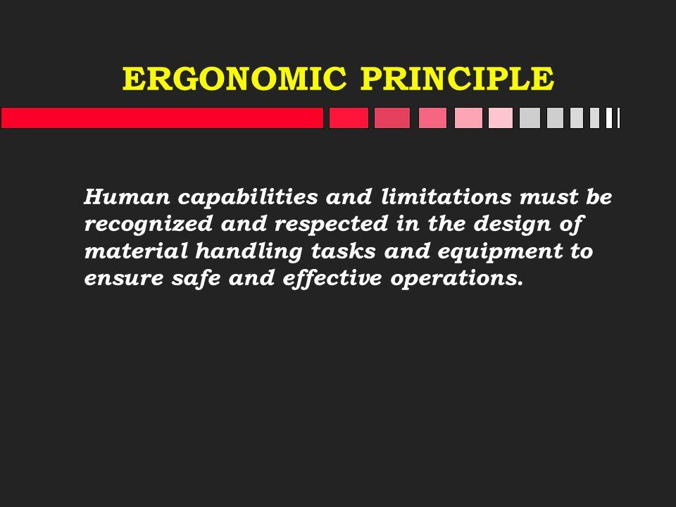 ERGONOMIC PRINCIPLE