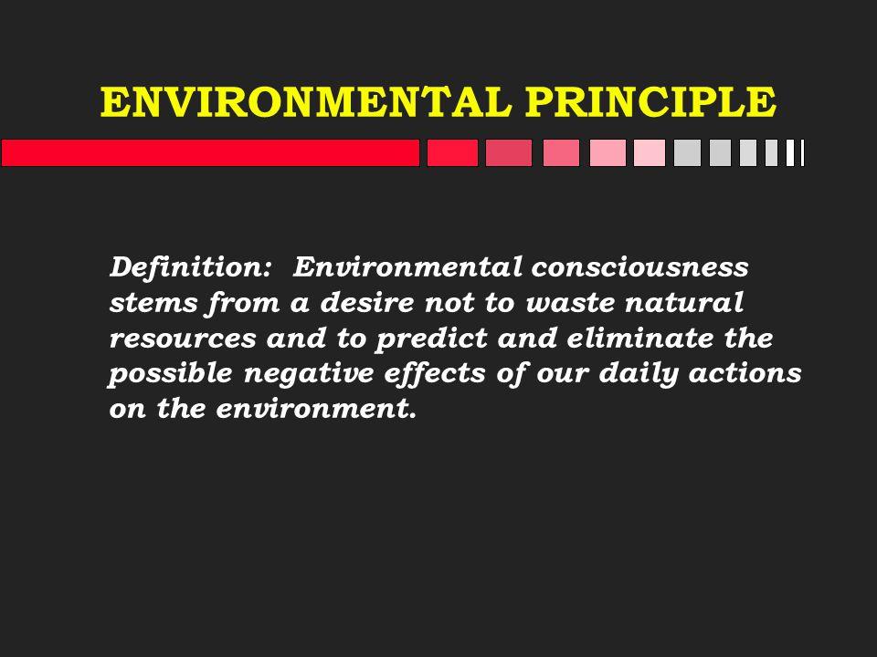ENVIRONMENTAL PRINCIPLE