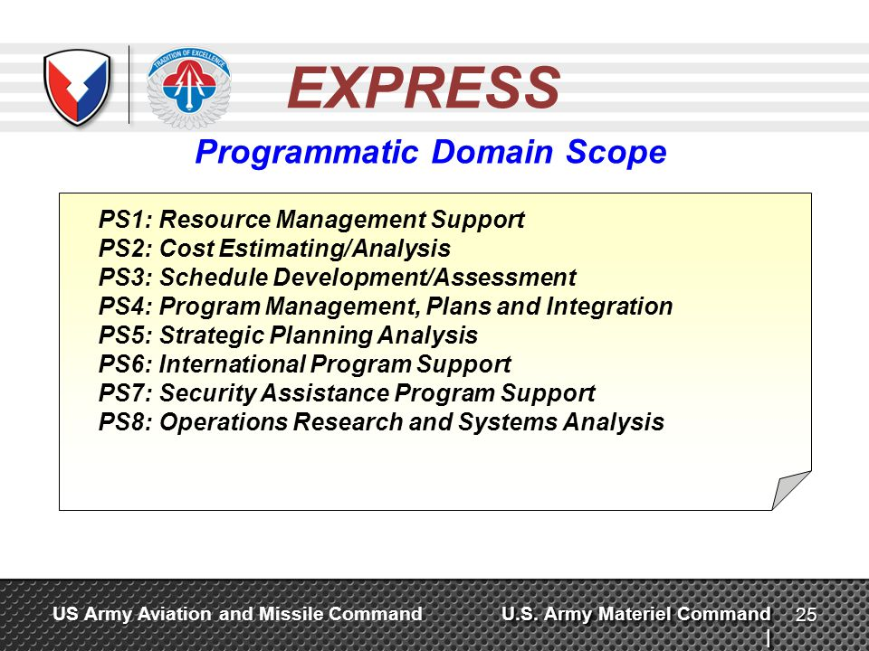 Programmatic Domain Scope