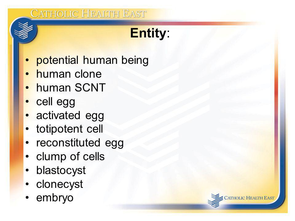 Entity: potential human being human clone human SCNT cell egg