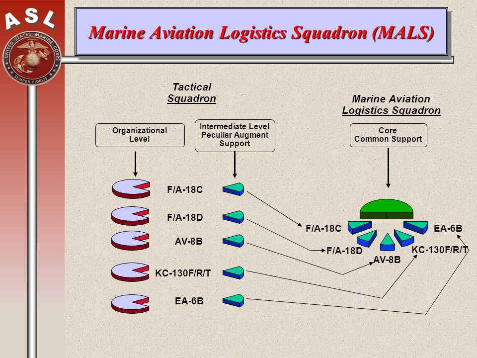 Marine Aviation Logistics Squadron (MALS)