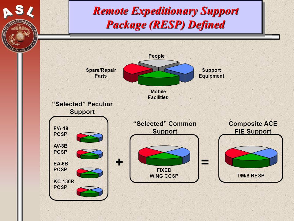 Remote Expeditionary Support Package (RESP) Defined