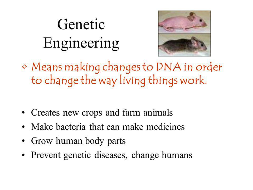 Genetic Engineering Means making changes to DNA in order to change the way living things work. Creates new crops and farm animals.
