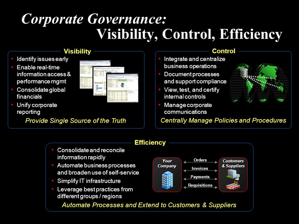 Corporate Governance: Visibility, Control, Efficiency