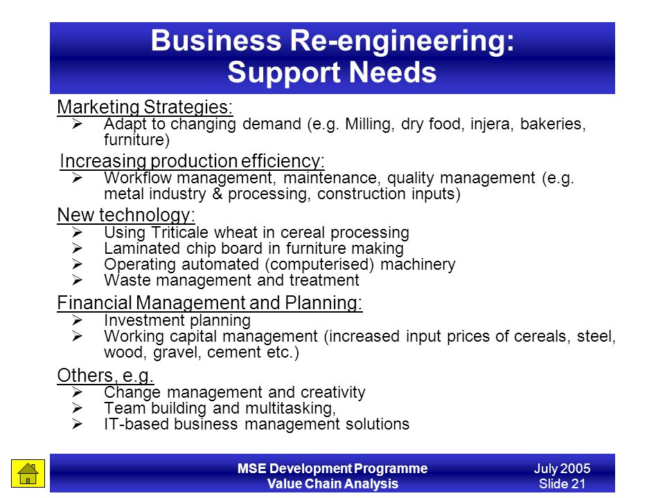 Business Re-engineering: Support Needs