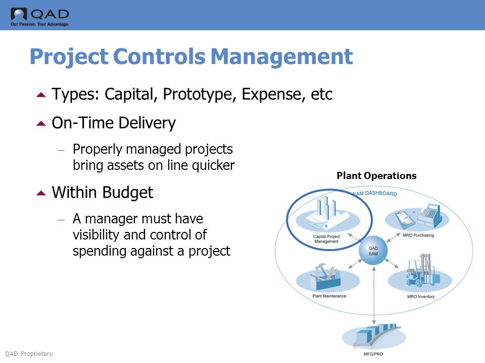 Project Controls Management