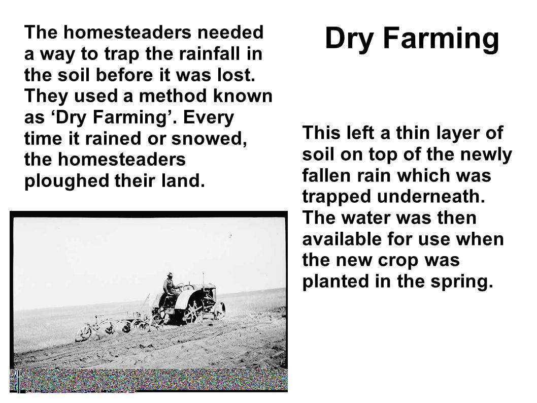 The homesteaders needed a way to trap the rainfall in the soil before it was lost. They used a method known as 'Dry Farming'. Every time it rained or snowed, the homesteaders ploughed their land.