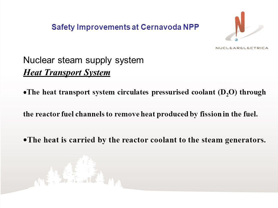 Nuclear steam supply system Heat Transport System