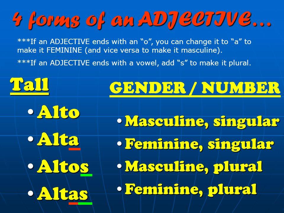 4 forms of an ADJECTIVE… Tall Alto Alta Altos Altas GENDER / NUMBER