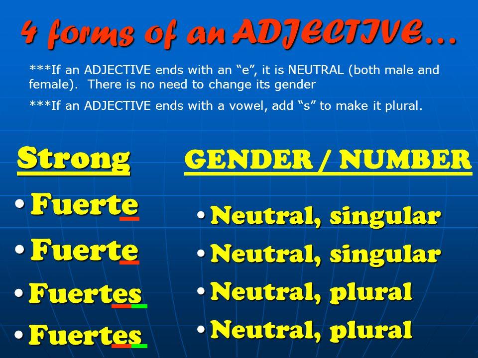 4 forms of an ADJECTIVE… Strong Fuerte Fuertes GENDER / NUMBER