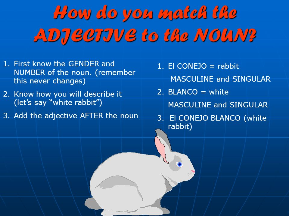 How do you match the ADJECTIVE to the NOUN