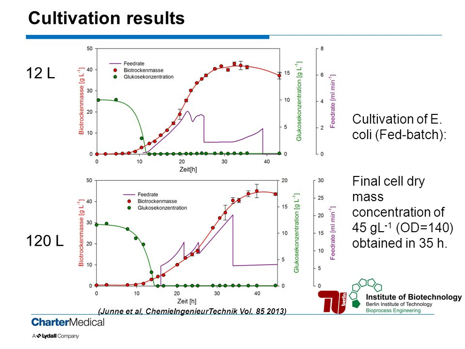Cultivation results 12 L 120 L Cultivation of E. coli (Fed-batch):