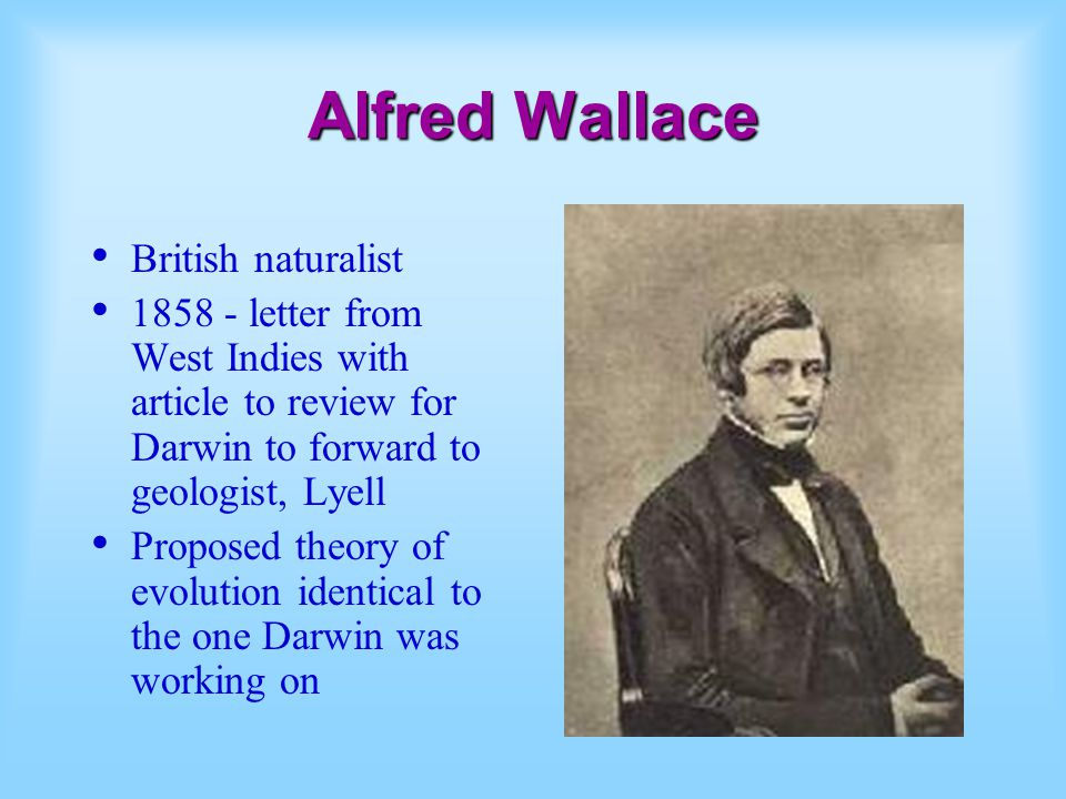 Alfred Wallace British naturalist