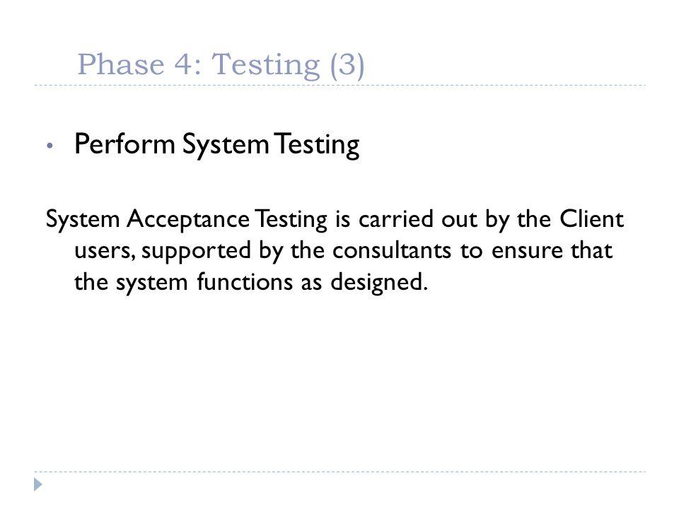 Perform System Testing