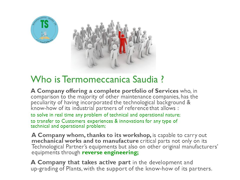Who is Termomeccanica Saudia