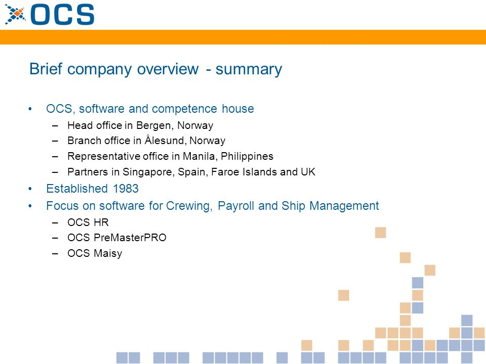 Brief company overview - summary