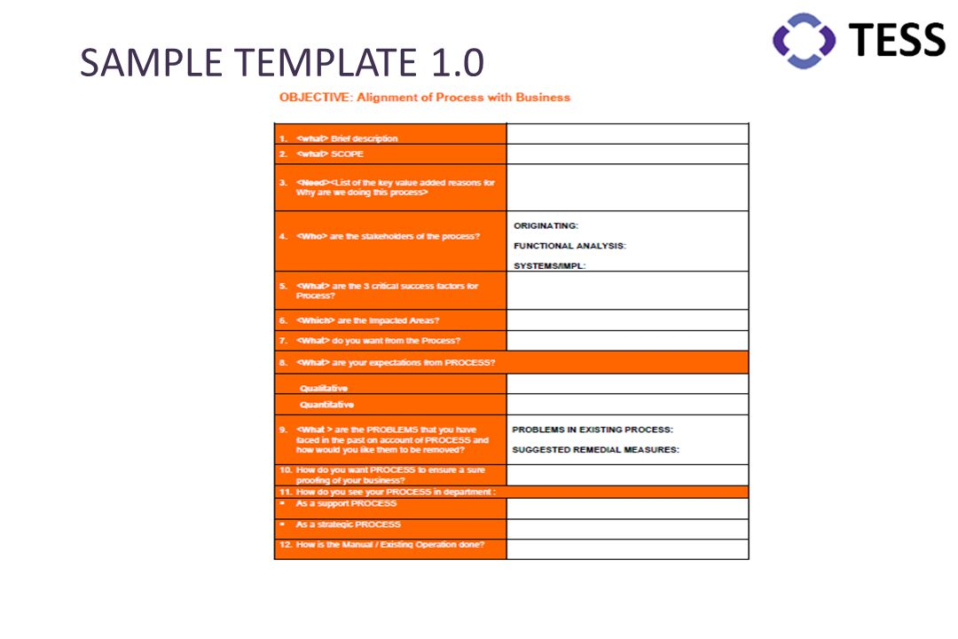 SAMPLE TEMPLATE 1.0