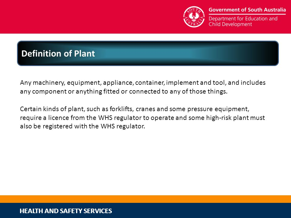 Definition of Plant
